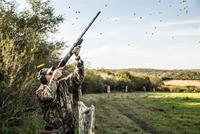 Dove hunting high volume